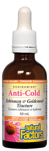 Supplements & Vitamins - Natural Factors - Anti-Cold Echinacea & Goldenseal Tincture, 50ml