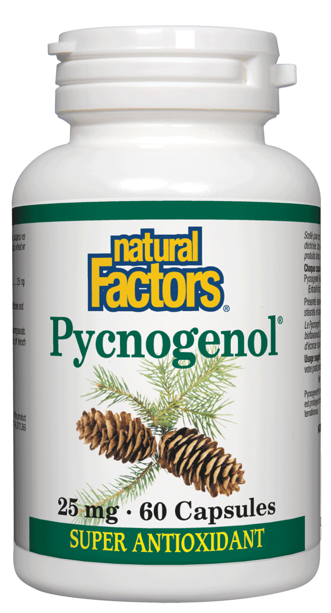 Supplements & Vitamins - Natural Factors - Pycnogenol, 60 Capsules