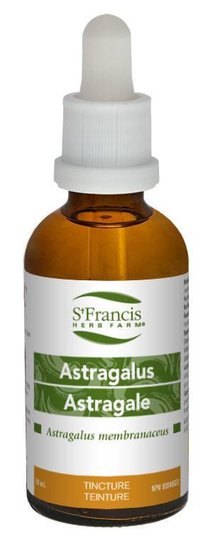 Supplements & Vitamins - St. Francis - Astragualus, 50ml