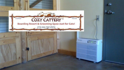 Catalytic PURE AIR at Cozy Cattery for cat boarding