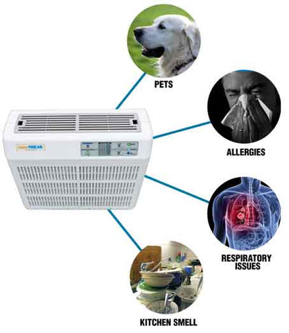Air purifiers for pets, allergies, respiratory issues and asthma