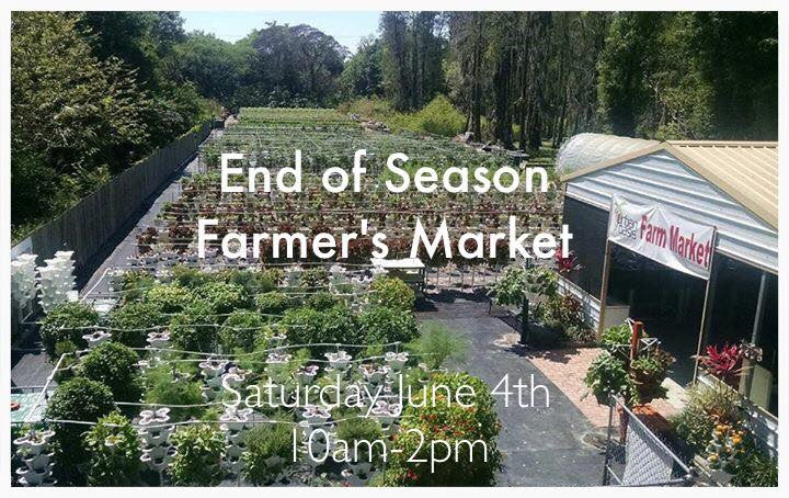 End of Season Market at Urban Oasis Farm Saturday June 4th, 2016