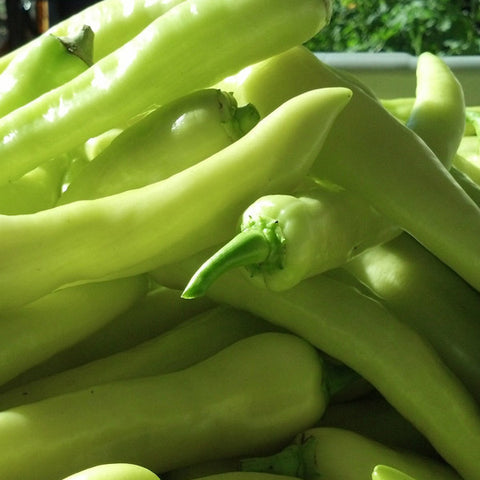 Banana Pepper (1/2 lb)