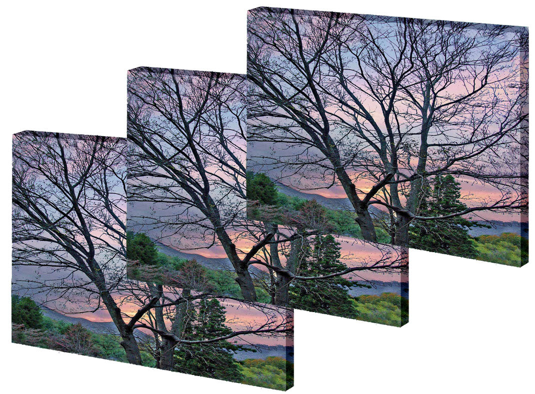 Medium Gallery Wrap Photo Tapestries- Volume Discounts