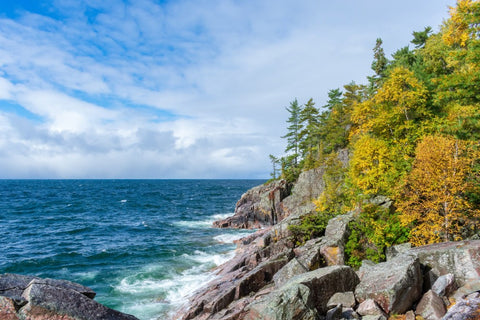 Coast with trees and rocks on Great Lakes