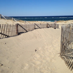 Race Point Beach sand and wooden walkway
