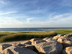 Cape Cod coast with rocks, grass, and ocean