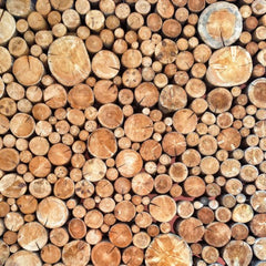 Top view of logs of wood