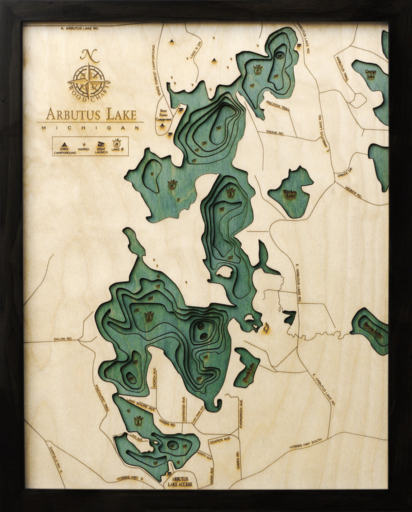 "Arbutus Lake (Traverse), Michigan 3-D Nautical Wood Chart, Small, 16"" x 20"""