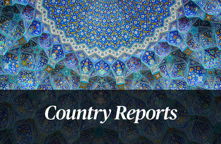 Stratfor Country Reports