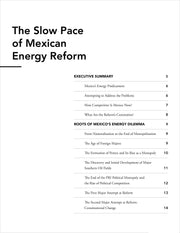 Oil! - Mexican Energy Reform - Stratfor Store