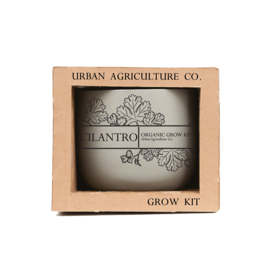 Cilantro Metro Grow Kit