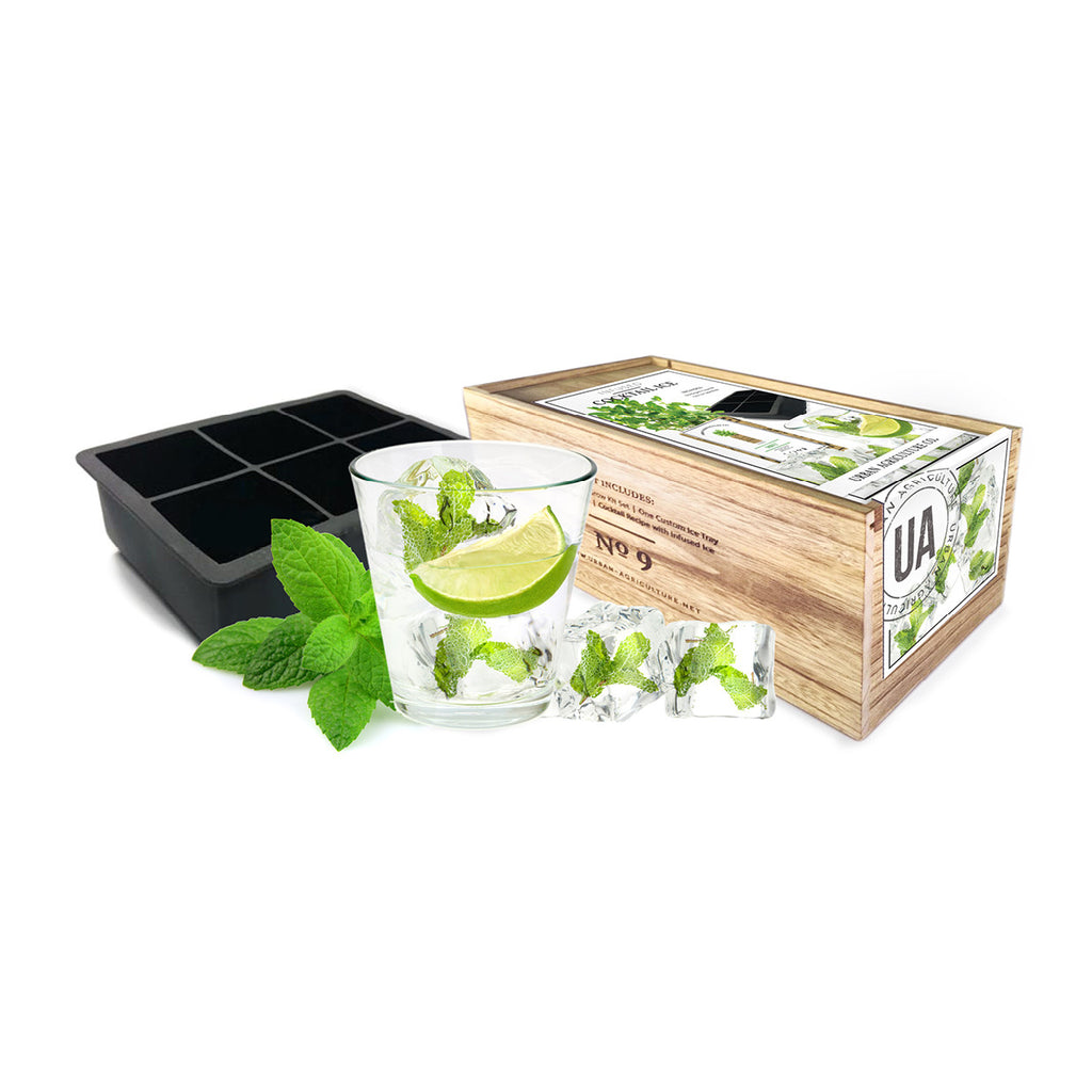Mint Infused Cocktail Ice Kit