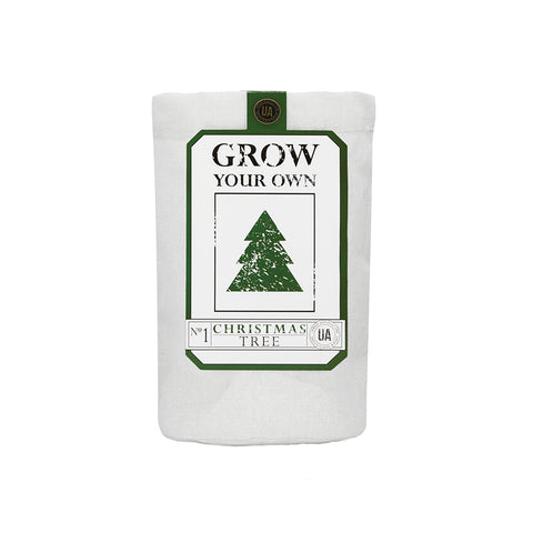 Christmas Tree Grow Kit