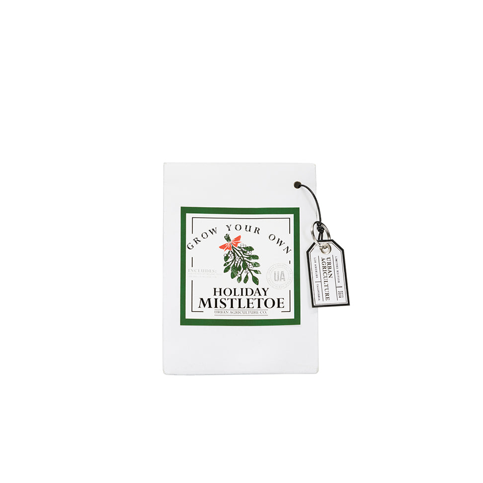 Mistletoe - Paper Grow Bag