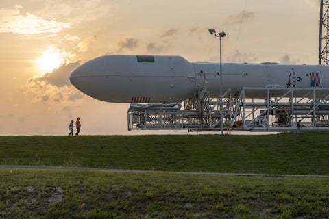 Falcon 9 Thales Rollout
