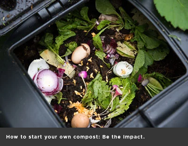 How to start your own compost: Be the Impact.
