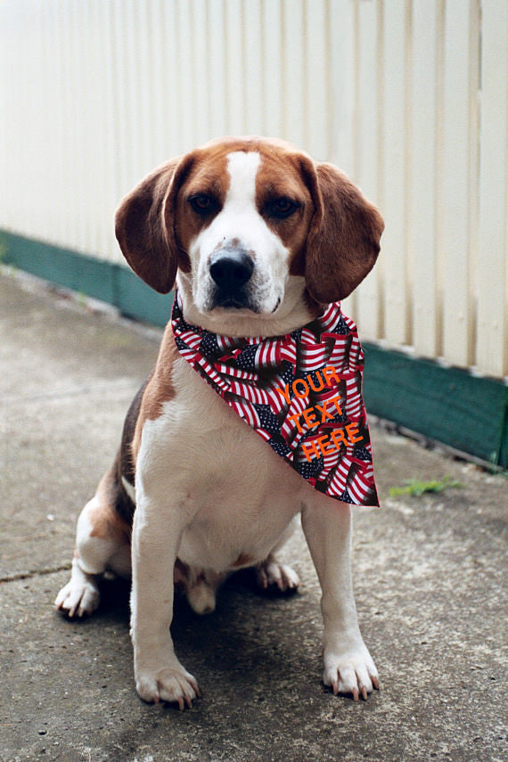 Custom Your Text Here Dog Bandana / Dog accessories / Dog Paw Print Red White Blue Dog Bandana / Personalized bandana dog American Flag
