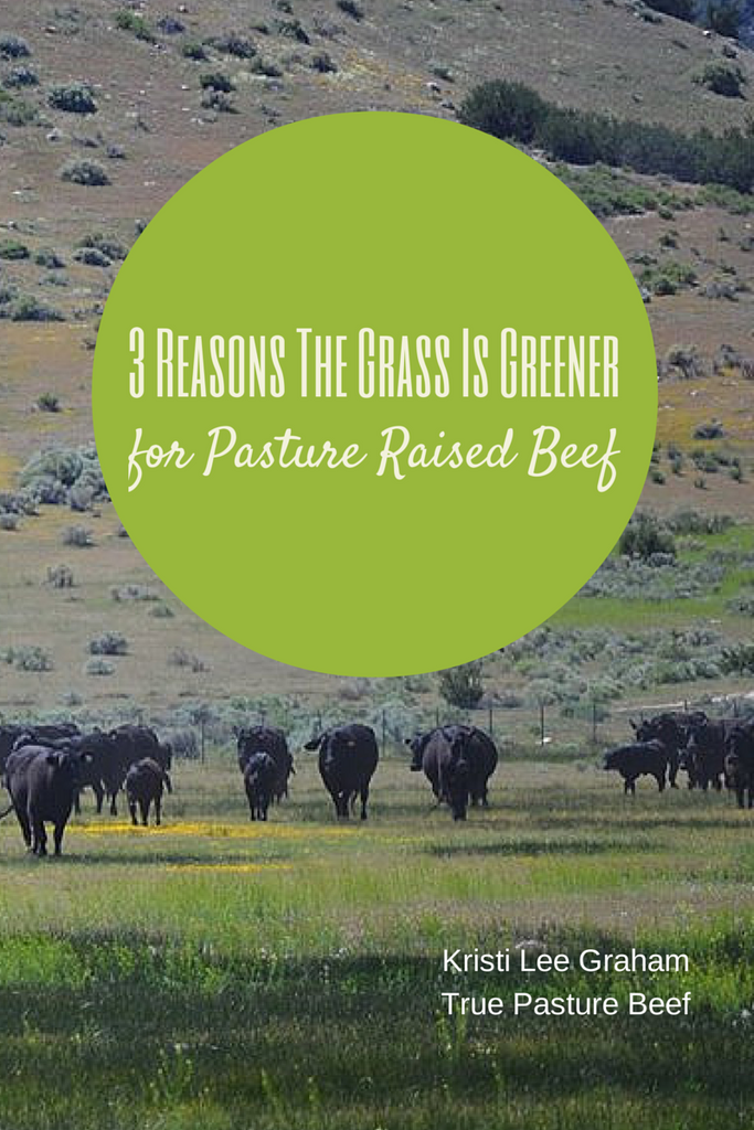 3 Reasons Why the Grass is Greener for Pasture Raised Beef