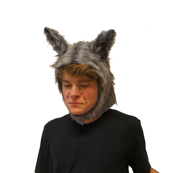 Crying Wolf- Funny Pun Halloween Costume
