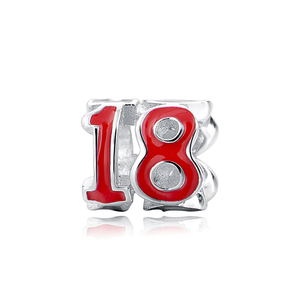 18 Years Charm Sterling Silver fit Charm Bracelet | Loulu Charms