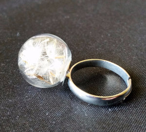 Real Dandelion Ring | Loulu Charms