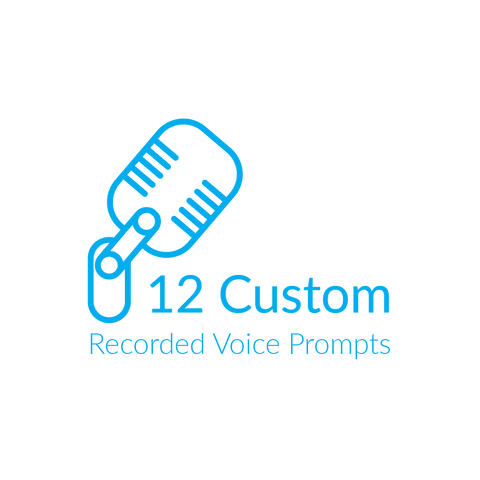 12 custom recorded voice prompts