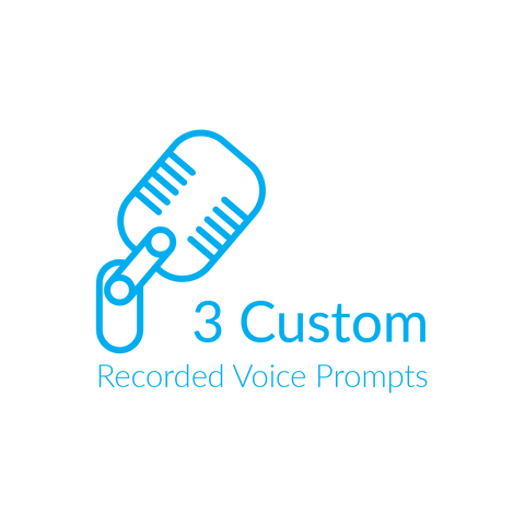 3 custom recorded voice prompts