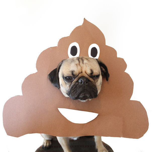 poop emoji dog costume