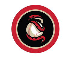 Arizona Diamondbacks popsocket