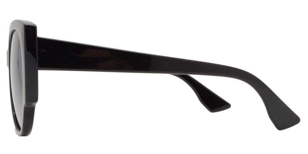 Dynasol Eyewear - Wholesale Sunglasses - FC 6348 - Retro Cat Eye Women Plastic Sunglasses - sunglasses
