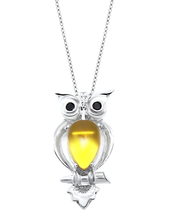 Sterling Silver Owl Pendant Chain Necklace for Women (18 Inch)