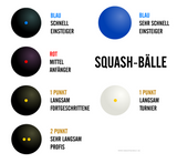 Victor SQUASH BALL types - Hutkay.fit