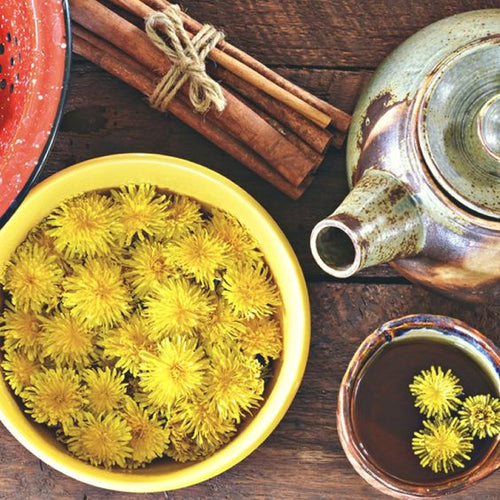 Workshop: Spring Detoxification and Managing Stress with Herbs - Corner Alchemy Apothecary