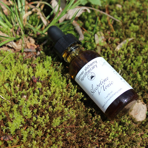 Sleep Herbal Bitters - Corner Alchemy Apothecary