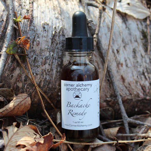 Backache - Herbal Bitters - Corner Alchemy Apothecary