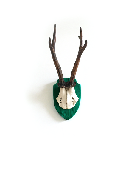Mon's Antlers Petite - Green