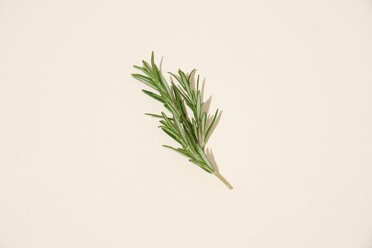 A sprig of rosemary on a neutral background.