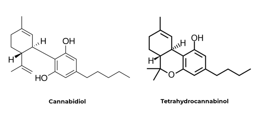 Cannabidiol and Tetrahydrocannabinol chemical formula