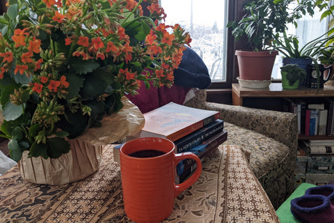 Coffee with books and House plants