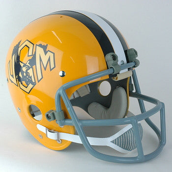 Southern Mississippi Golden Eagles 1973-1974 Vintage Full Size Helmet