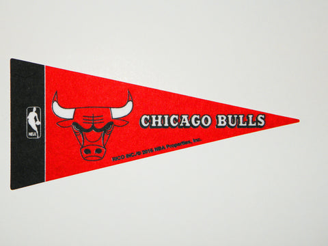 "Chicago Bulls 4""x9"" Mini Pennant"