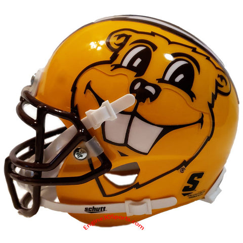 Minnesota Golden Gophers Schutt XP Mini Helmet - Alternate 4 side