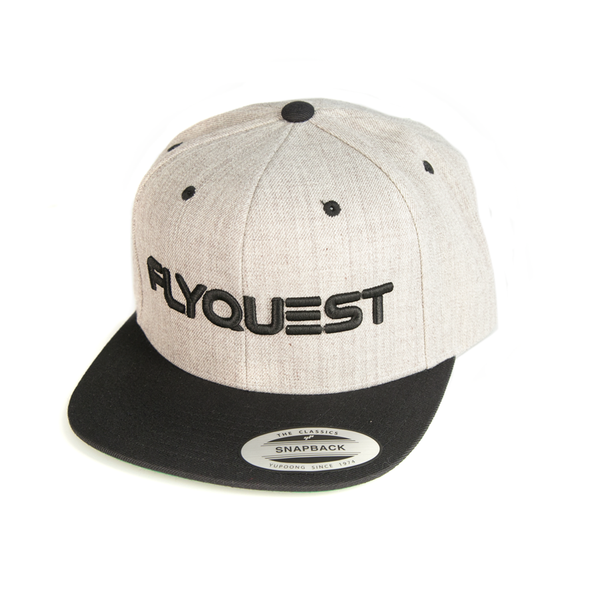 "FlyQuest ""Typeface Grey"" Snapback"