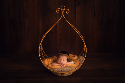 Vintage Bed - Hanging Drop - Gold-Newborn Photography Props