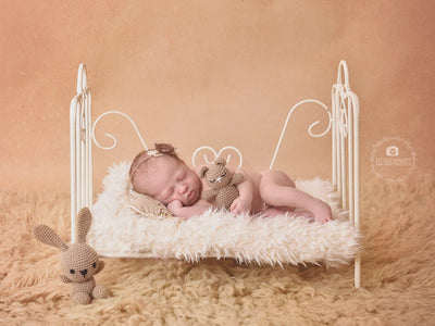 Vintage Bed - White Model 1-Newborn Photography Props