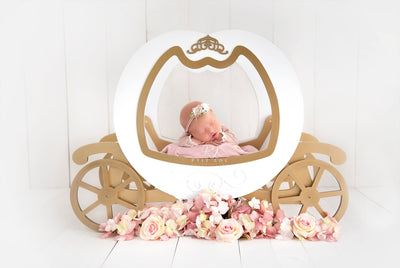 This princess carriage prop for newborn photography is perfect for any little princess OR prince! Add a few flower bundles and a simple backdrop or setup a lovely fantasy backdrop with pumpkins all around. This carriage is definitely the best prop to wow your clients.