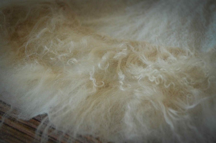 Natural Wool Base - Beige