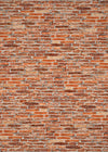 Studio Bricks Backdrop/Floor LR5