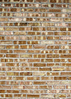 Studio Bricks Backdrop/Floor LR9